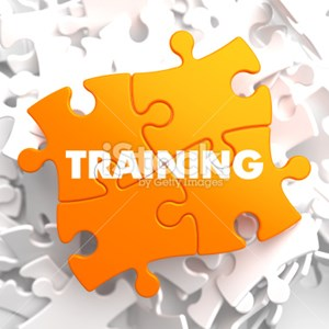 Training Qualifications